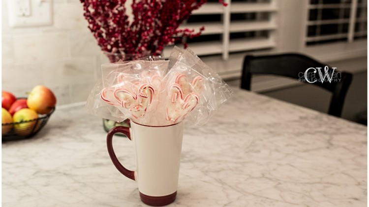 Make Peppermint Bark Pops! - (cool) progeny