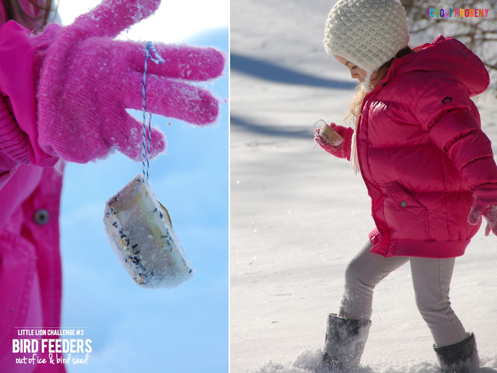 How to Make an Ice Cube Bird Feeder #LittleLionChallenge