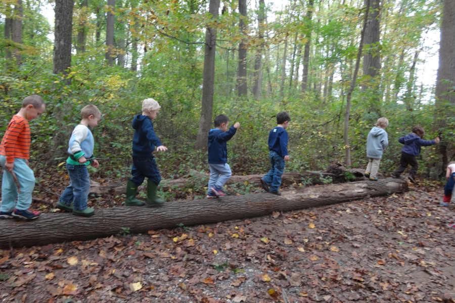 Nature Preschool: Early Childhood Education Rooted in Nature - (cool) progeny
