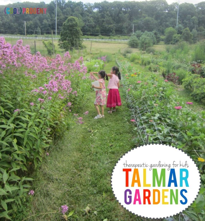 TALMAR Gardens: Baltimore Therapeutic Outdoor Education - (cool) progeny