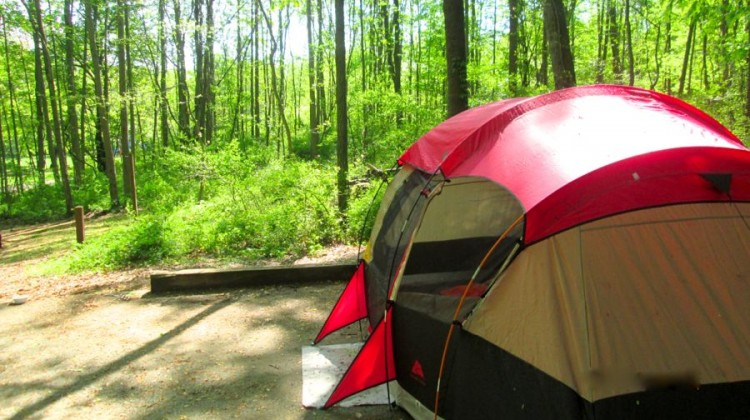 Camping with Kids in Baltimore - (cool) progeny
