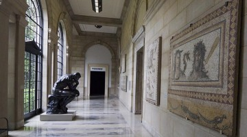 Baltimore Museum of Art Needs Area Families to Help! - (cool) progeny