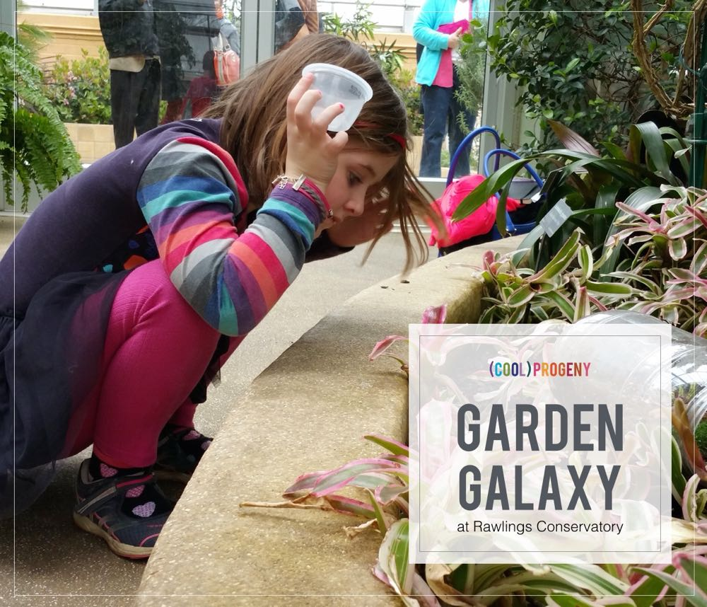 garden galaxy at rawlings conservatory - (cool) progeny