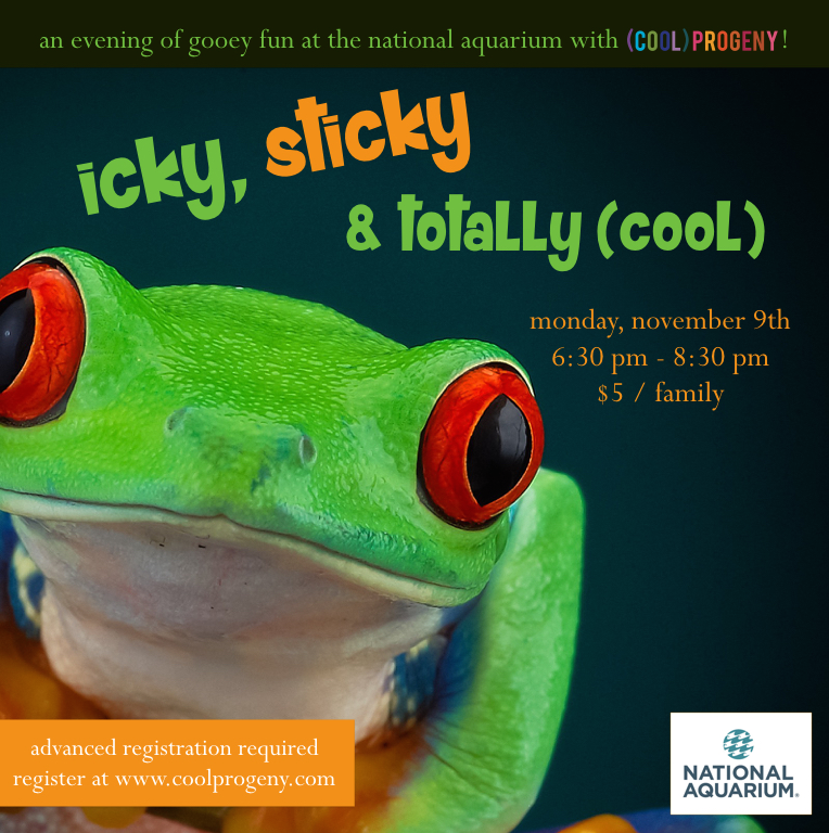 An Icky Sticky Play Date at the National Aquarium - (cool) progeny