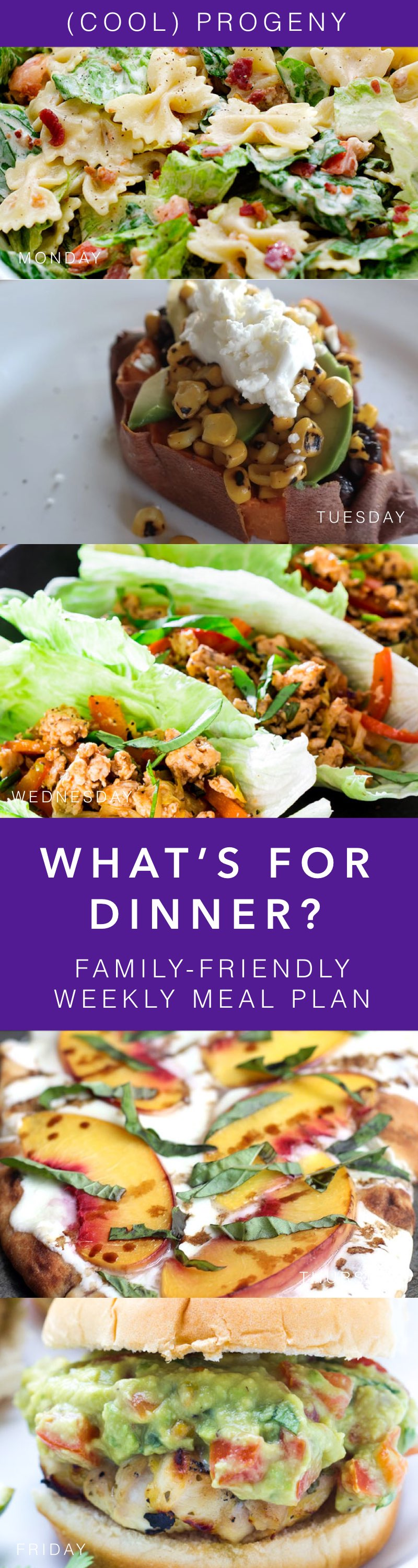 Family Friendly Dinners Week - (cool) progeny