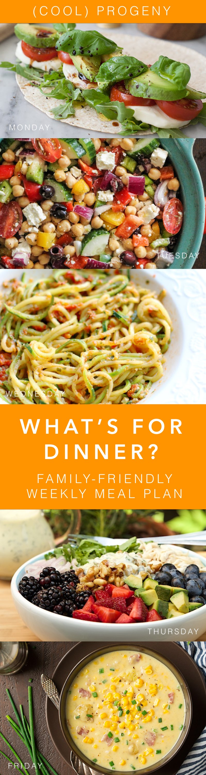 Family Friendly Dinners this Week - (cool) progeny