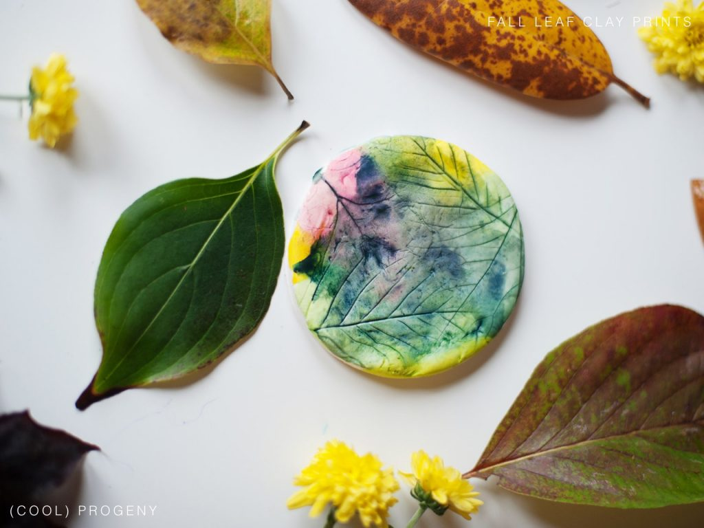 Fall Clay Leaf Prints - (cool) progeny