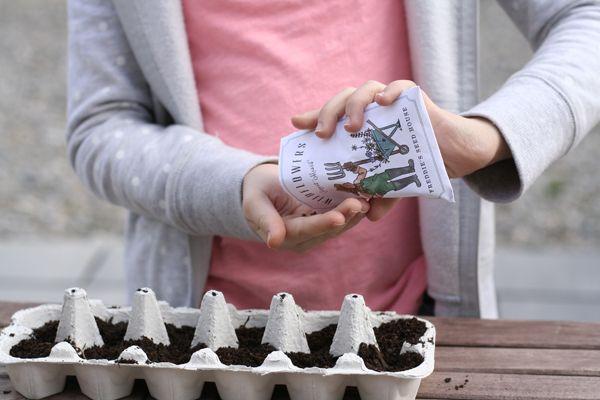 Egg Carton Garden - (cool) progeny