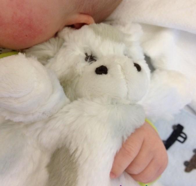 Little Lion Man - (cool) progeny