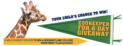 Zookeeper for a Day Contest - (cool) progeny
