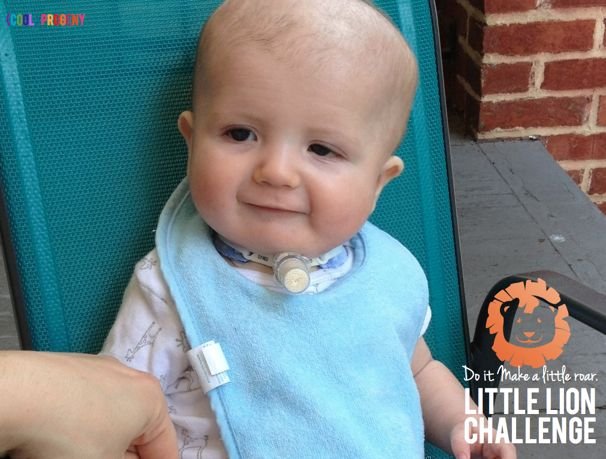Little Lion Challenge - (cool) progeny