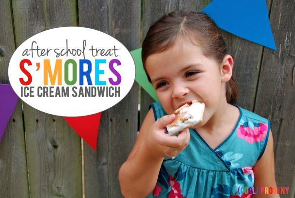 S'mores Ice Cream Sandwiches - (cool) progeny