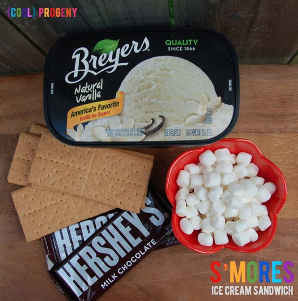 S'mores Ice Cream Sandwiches - (cool) progeny