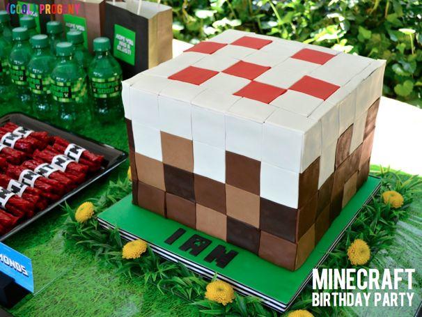 Minecraft Birthday Party - (cool) progeny