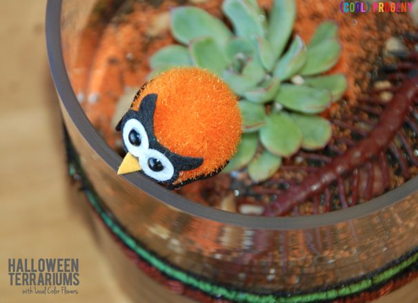 (cool) progeny makes a #halloween terrarium with local color flowers in baltimore! #holidays #gardening #kids