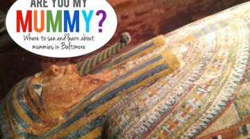 Where To See Mummies in Baltimore - (cool) progeny