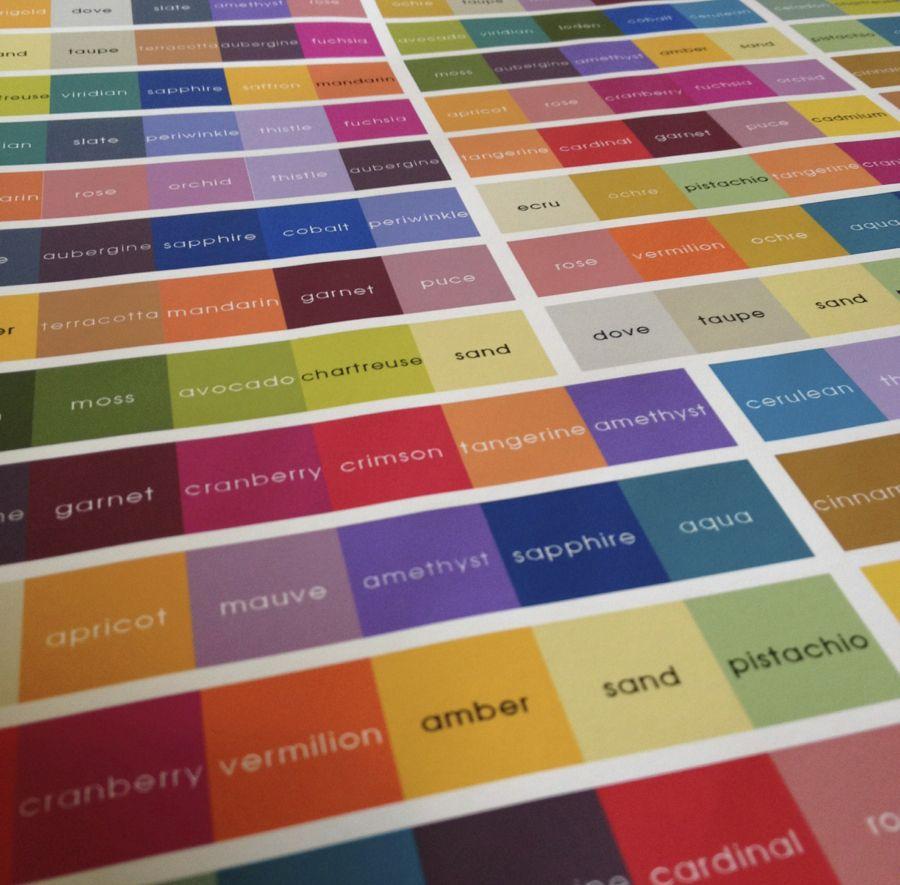 Presto Bingo Colors - (cool) progeny