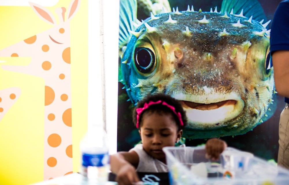 (cool) progeny kids' art exploration at art outside 2015 - (cool) progeny