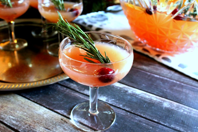 cocktail timeout: holiday punch - (cool) progeny