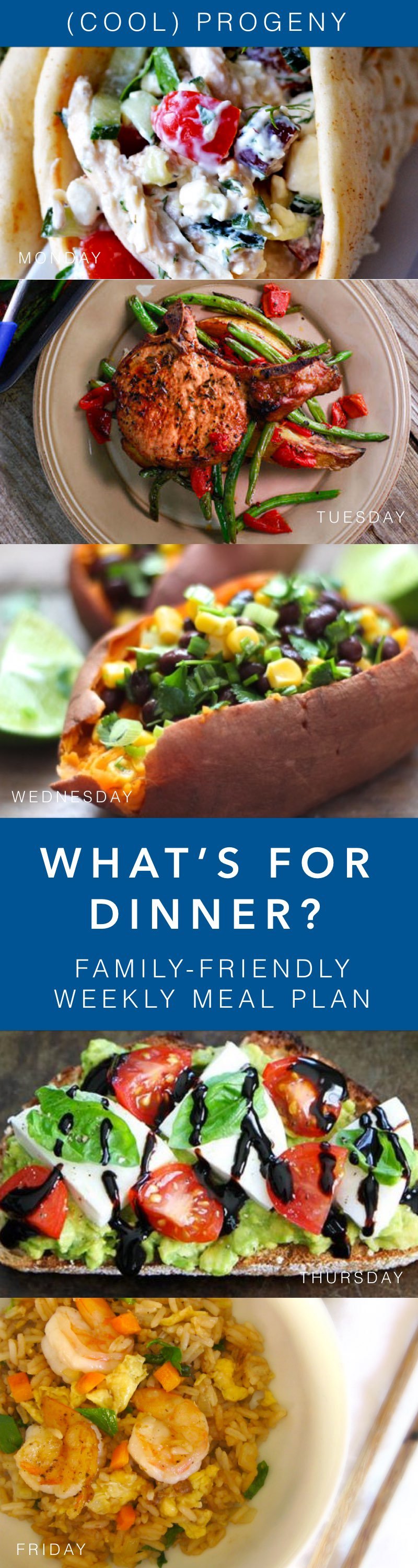 Family-Friendly Dinners This Week - (cool) progeny