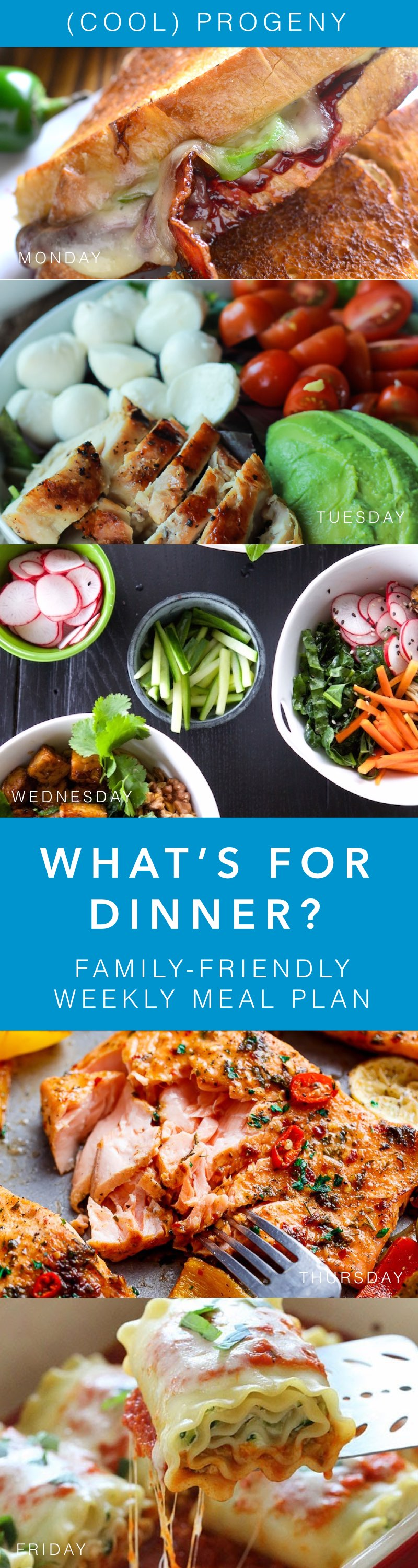 Family Dinners This Week - (cool) progeny
