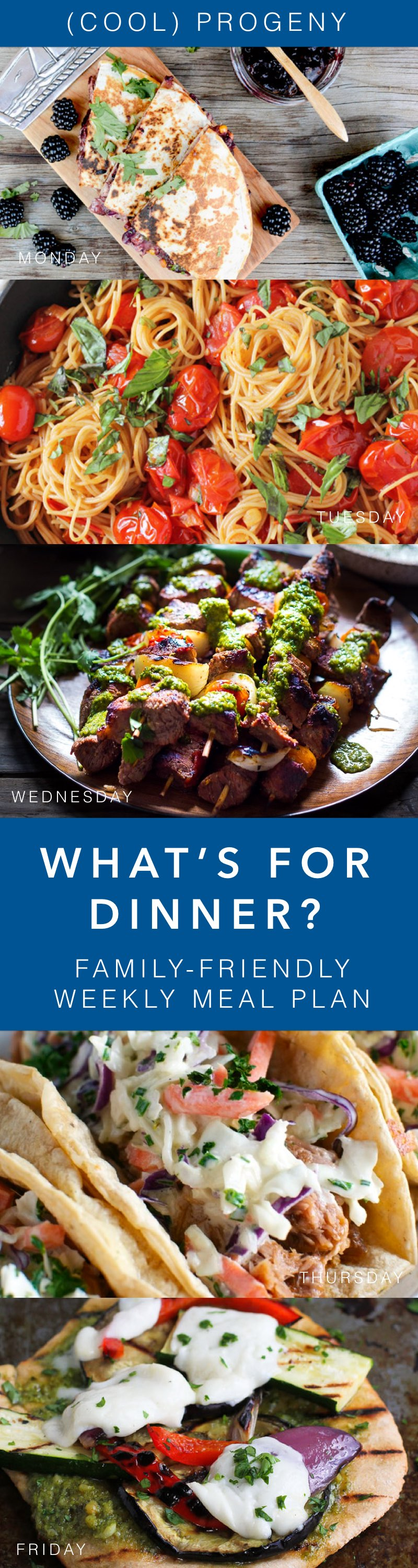 Family-Friendly Meals This Week - (cool) progeny