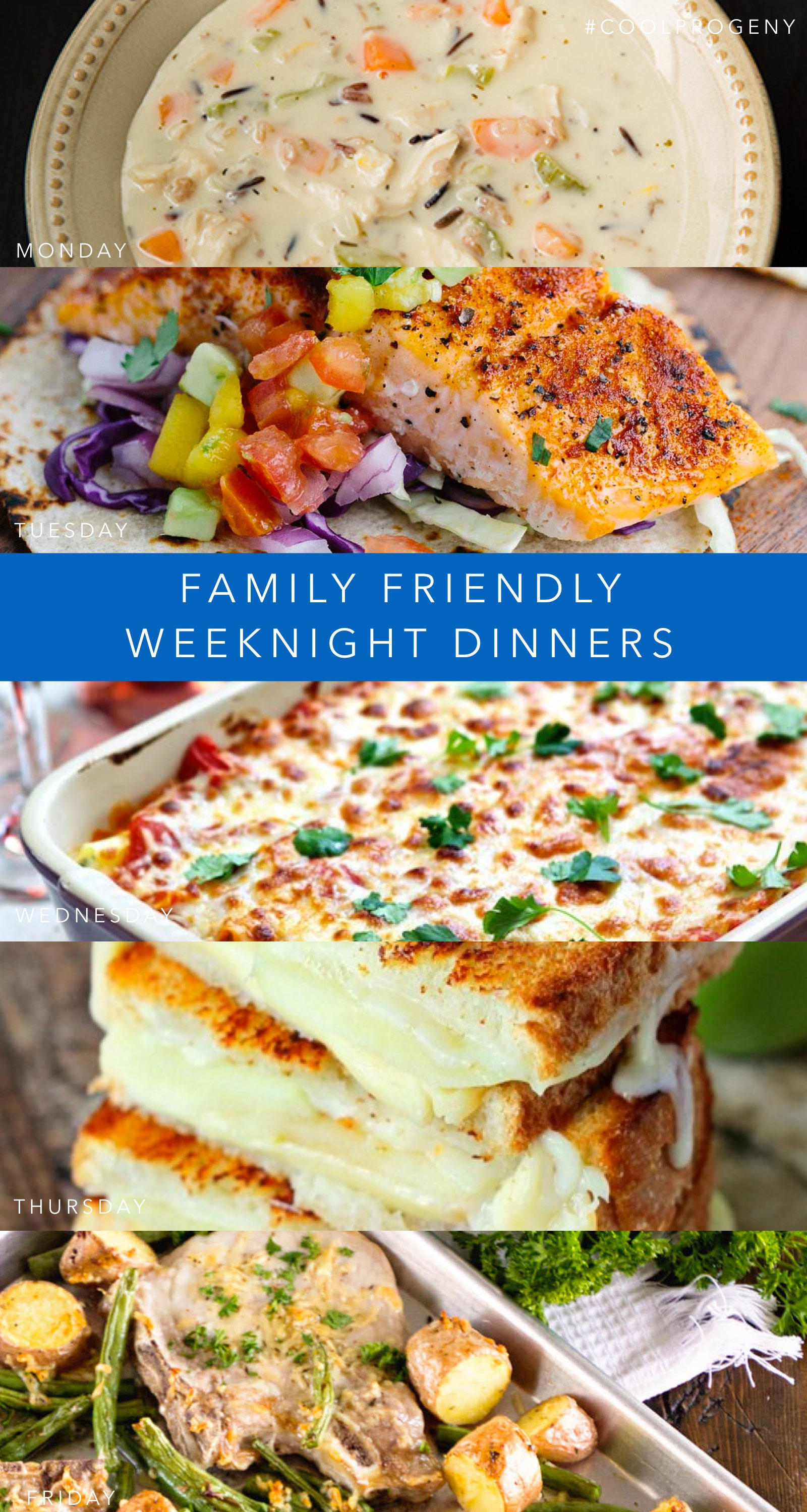 Family Weeknight Dinners - (cool) progeny