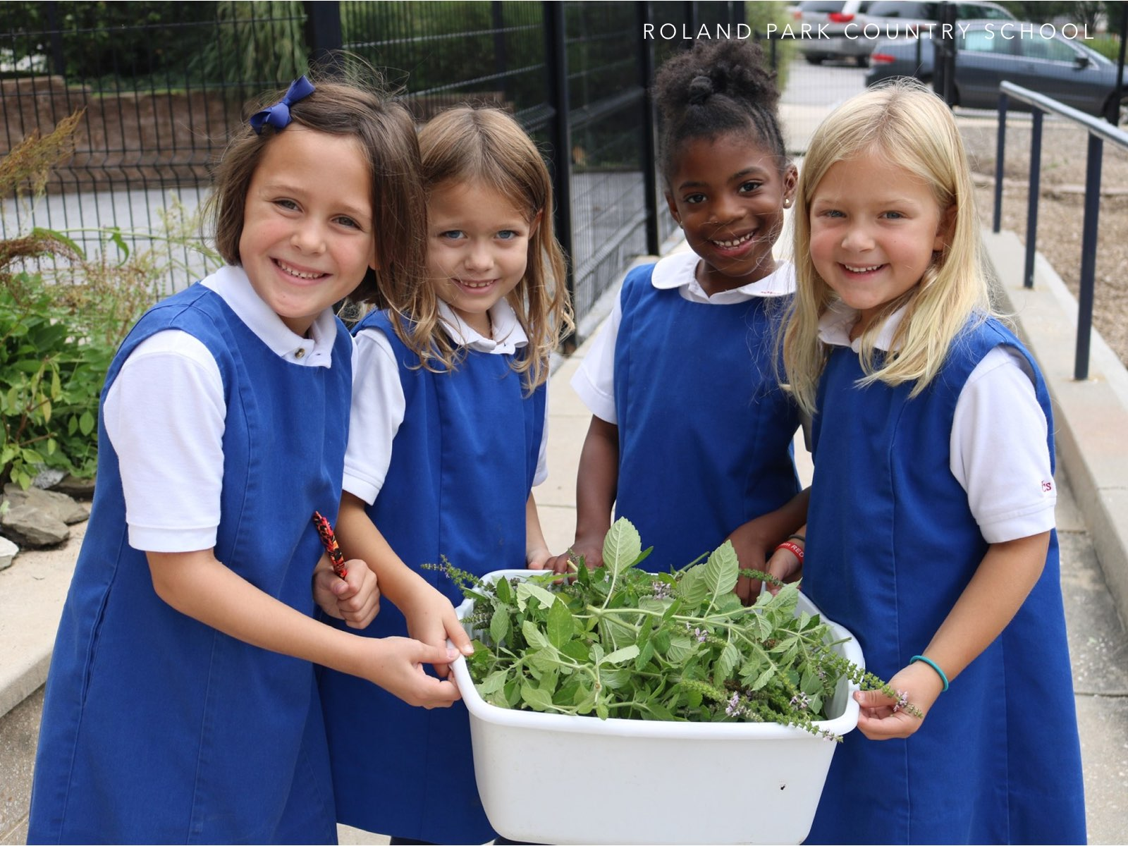 School Stories - Roland Park Country School - (cool) progeny