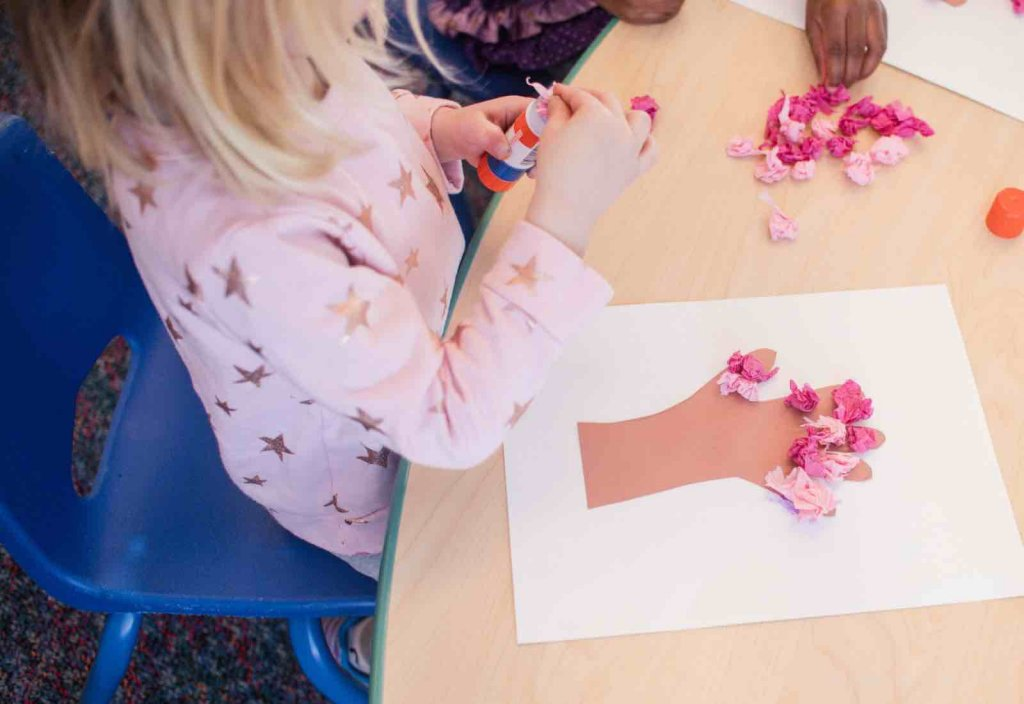 St. Paul's Plus - Cherry Blossom Craft - (cool) progeny. Photo by Allie Webster