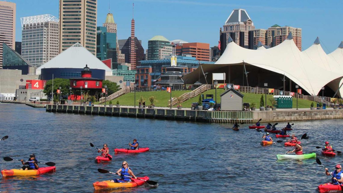 Inner Harbor Kayaking - (cool) progeny