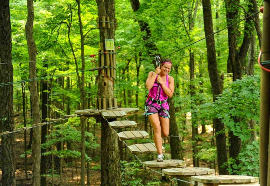 Go Ape Treetop Adventure