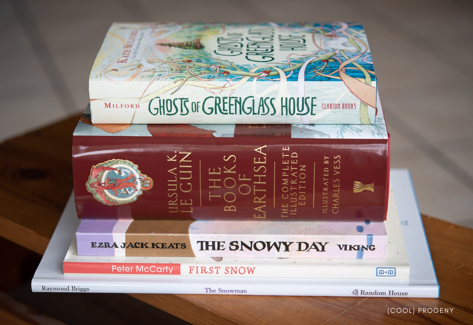 Snuggly Snow Day Reads