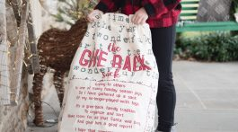 Ways to Give Back with Kids this Holiday Season