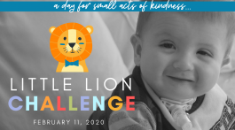 Little Lion Challenge 2020
