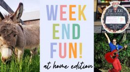 Weekend Fun: At Home Edition, April 17-19