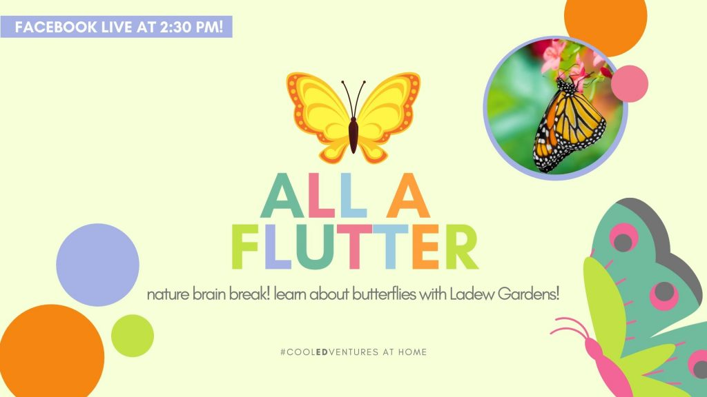 Cool EDVentures: All a Flutter with Ladew Topiary Gardens
