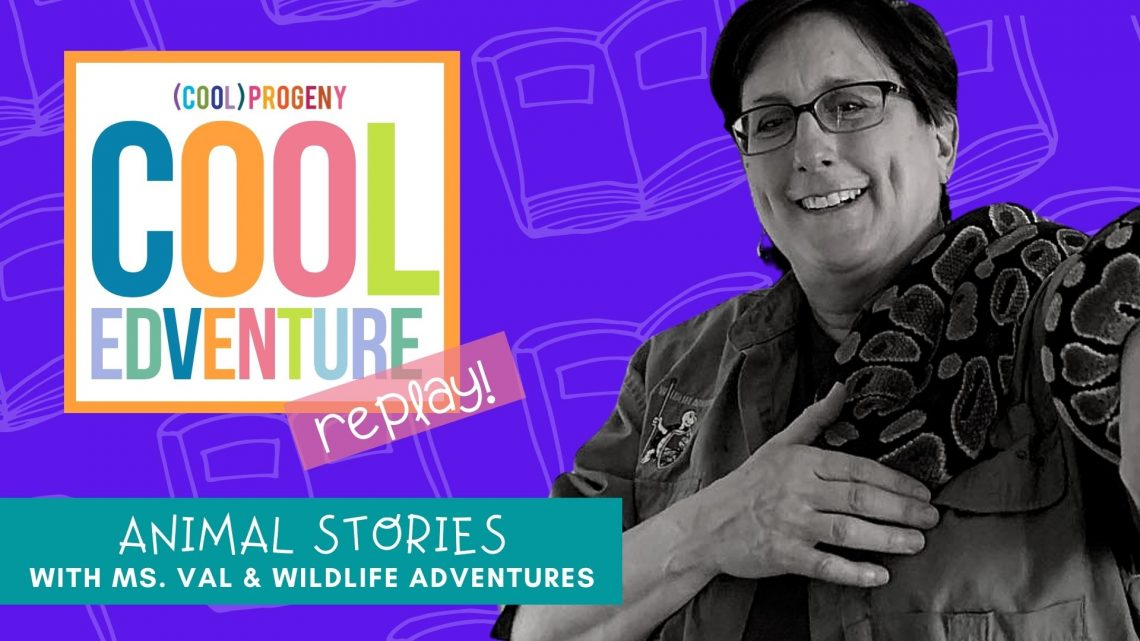 Cool EDventures | Animal Stories with Miss val