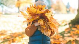 Fall Nature Programs for Preschoolers