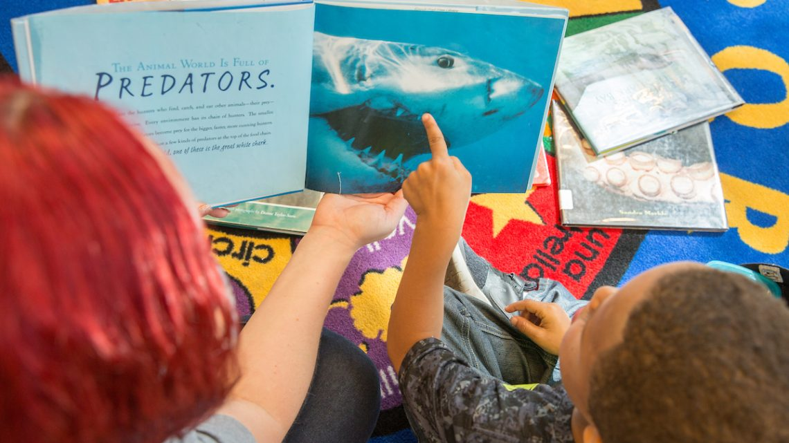 Read To Reef Reading Program | Pratt LIbrary Highlandtown | October 7, 2017