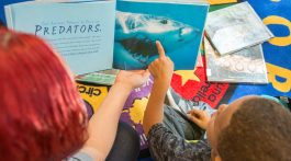 Read To Reef Reading Program | Pratt LIbrary Highlandtown | October 7, 2017