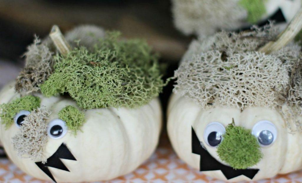 Halloween Top Five: Monster Mini Pumpkins