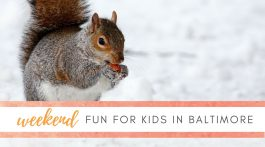 Weekend Fun for Kids - January 15-17