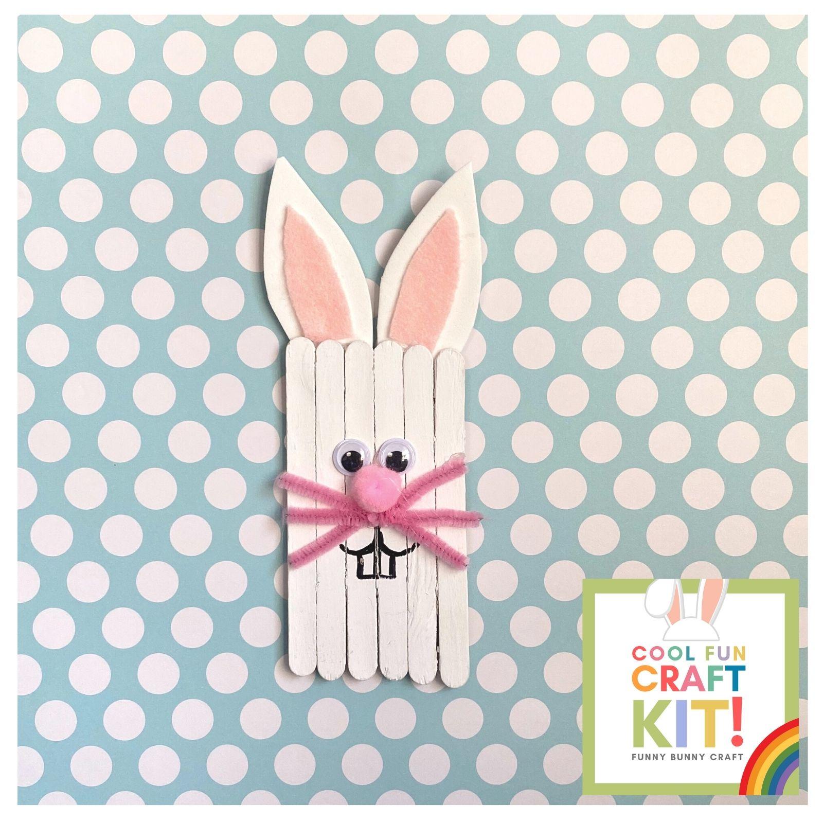 Funny Bunny Craft Kit